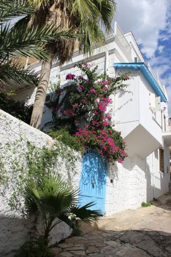 Upfront,up,front,reviews,accommodation,self,catering,rental,holiday,homes,cottages,feedback,information,genuine,trust,worthy,trustworthy,supercontrol,system,guests,customers,verified,exclusive,bianca villa,olive tree travel,old town kalkan,,image,of,photo,picture,view