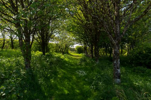 Upfront,up,front,reviews,accommodation,self,catering,rental,holiday,homes,cottages,feedback,information,genuine,trust,worthy,trustworthy,supercontrol,system,guests,customers,verified,exclusive,byre cottage at wheel farm (5),my favourite cottages,combe martin,,image,of,photo,picture,view