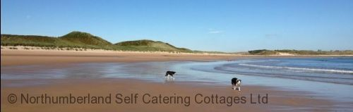 Upfront,up,front,reviews,accommodation,self,catering,rental,holiday,homes,cottages,feedback,information,genuine,trust,worthy,trustworthy,supercontrol,system,guests,customers,verified,exclusive,the bothy,northumberland self catering cottages ltd,beadnell,,image,of,photo,picture,view