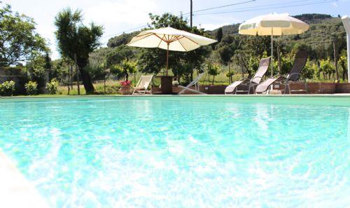 Pool and summer shades