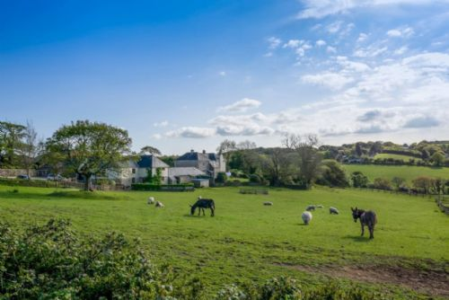Upfront,up,front,reviews,accommodation,self,catering,rental,holiday,homes,cottages,feedback,information,genuine,trust,worthy,trustworthy,supercontrol,system,guests,customers,verified,exclusive,gallery,tregongeeves farm,st austell,,image,of,photo,picture,view