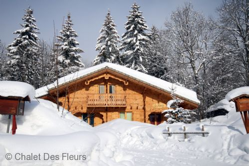 Upfront,up,front,reviews,accommodation,self,catering,rental,holiday,homes,cottages,feedback,information,genuine,trust,worthy,trustworthy,supercontrol,system,guests,customers,verified,exclusive,chalet mimosa,chalet des fleurs,les gets,,image,of,photo,picture,view