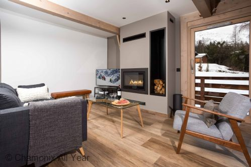 Modern lounge and log fire place