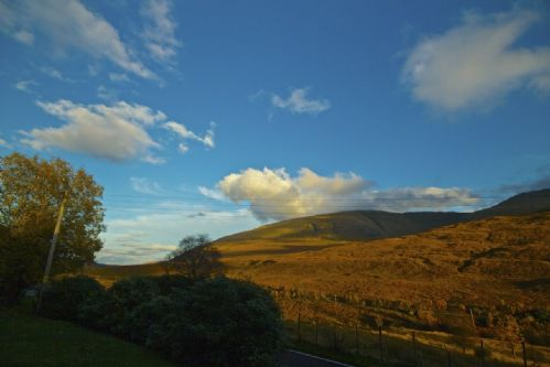Upfront,up,front,reviews,accommodation,self,catering,rental,holiday,homes,cottages,feedback,information,genuine,trust,worthy,trustworthy,supercontrol,system,guests,customers,verified,exclusive,biallid house,my favourite cottages,newtonmore,,image,of,photo,picture,view
