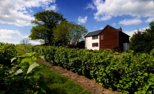 Upfront,up,front,reviews,accommodation,self,catering,rental,holiday,homes,cottages,feedback,information,genuine,trust,worthy,trustworthy,supercontrol,system,guests,customers,verified,exclusive,field cottage,white heron properties,herefordshire,,image,of,photo,picture,view