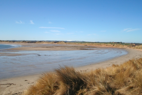 The beautiful Beadnell Bay, sweeps southwards to Newton