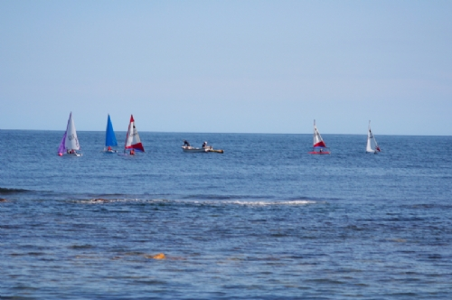 Dinghy sailing off Beadnell