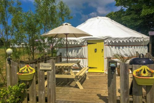 Upfront,up,front,reviews,accommodation,self,catering,rental,holiday,homes,cottages,feedback,information,genuine,trust,worthy,trustworthy,supercontrol,system,guests,customers,verified,exclusive,primrose yurt,cornwalls cottages ltd,perranporth,,image,of,photo,picture,view