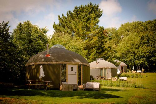 Upfront,up,front,reviews,accommodation,self,catering,rental,holiday,homes,cottages,feedback,information,genuine,trust,worthy,trustworthy,supercontrol,system,guests,customers,verified,exclusive,upper yurt - bonnie,the garlic farm,newchurch,,image,of,photo,picture,view
