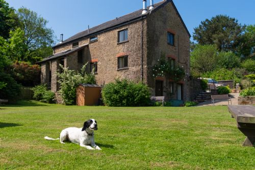 Upfront,up,front,reviews,accommodation,self,catering,rental,holiday,homes,cottages,feedback,information,genuine,trust,worthy,trustworthy,supercontrol,system,guests,customers,verified,exclusive,mill wheel at wheel farm (5),my favourite cottages,combe martin,,image,of,photo,picture,view