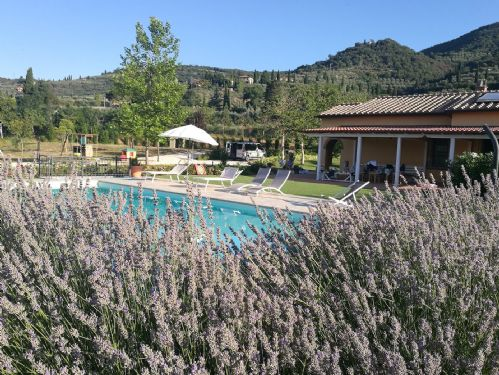 Villa Carla Tuscany,view of gardens and pool