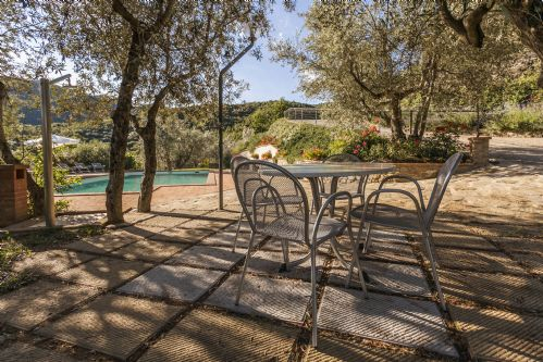 Quiet are adjacent to the pool with natural shading of olive trees