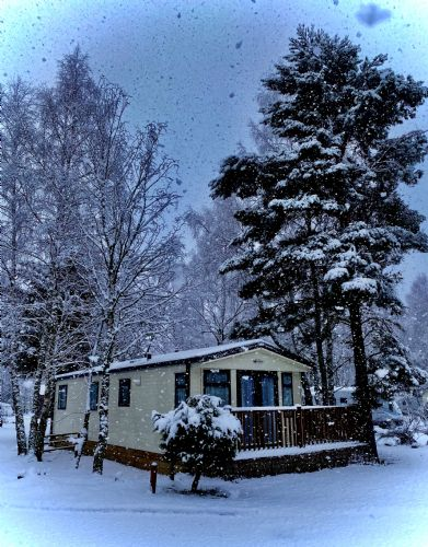 Upfront,up,front,reviews,accommodation,self,catering,rental,holiday,homes,cottages,feedback,information,genuine,trust,worthy,trustworthy,supercontrol,system,guests,customers,verified,exclusive,static van 311,dalraddy holiday park,nr. aviemore,,image,of,photo,picture,view