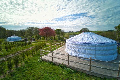 Hydrangea Yurt 9