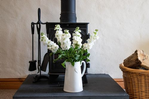 Upfront,up,front,reviews,accommodation,self,catering,rental,holiday,homes,cottages,feedback,information,genuine,trust,worthy,trustworthy,supercontrol,system,guests,customers,verified,exclusive,foxglove,higher carthew farm,helston,,image,of,photo,picture,view
