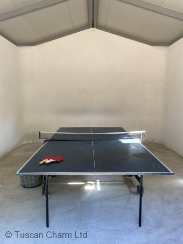 Inside table tennis / ping pong table,