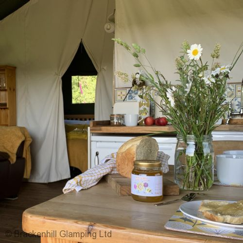 Upfront,up,front,reviews,accommodation,self,catering,rental,holiday,homes,cottages,feedback,information,genuine,trust,worthy,trustworthy,supercontrol,system,guests,customers,verified,exclusive,glow worm,brackenhill glamping ltd,ugborough,,image,of,photo,picture,view