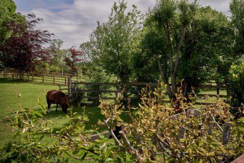 The Luxury Barn Gardens