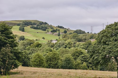 The Cowshed View 2