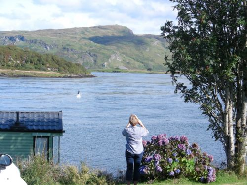 Upfront,up,front,reviews,accommodation,self,catering,rental,holiday,homes,cottages,feedback,information,genuine,trust,worthy,trustworthy,supercontrol,system,guests,customers,verified,exclusive,7 - birches holiday home,sunnybrae caravan park,oban,,image,of,photo,picture,view