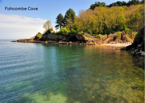 Upfront,up,front,reviews,accommodation,self,catering,rental,holiday,homes,cottages,feedback,information,genuine,trust,worthy,trustworthy,supercontrol,system,guests,customers,verified,exclusive,plover 3 - the cove,brixham holidays ltd,brixham,,image,of,photo,picture,view