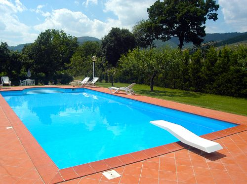 Very large super pool and surrounds to enjoy and relax