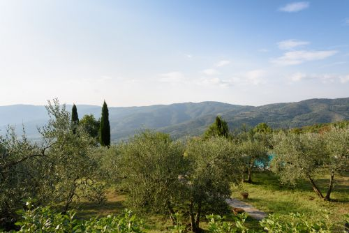 Upfront,up,front,reviews,accommodation,self,catering,rental,holiday,homes,cottages,feedback,information,genuine,trust,worthy,trustworthy,supercontrol,system,guests,customers,verified,exclusive,cottage  la luna ,tuscan charm,castiglion fiorentino,,image,of,photo,picture,view