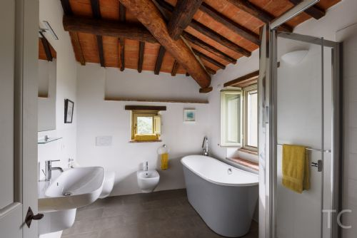 Bathtub and shower of the master bedroom