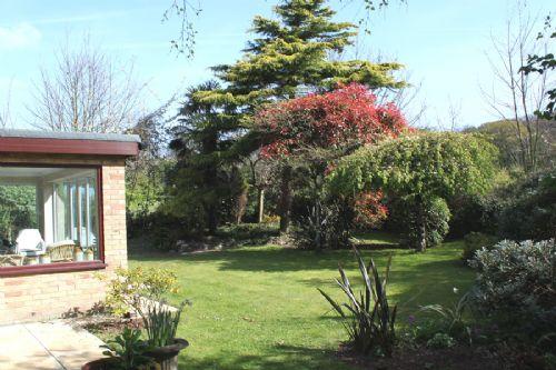 garden and sun room in Cromer