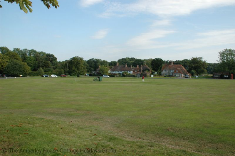 Large Image - The village green in Lurgashall
