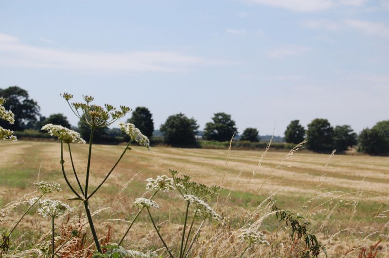 Large Image - The lovely countryside surrounding the property