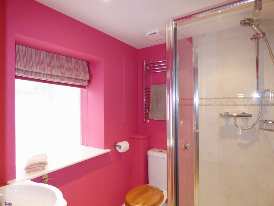Greystones | Downstairs shower room
