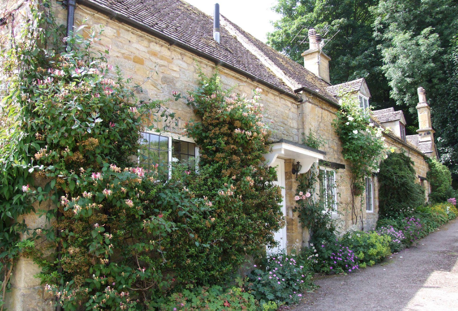 Keytes Cottage in bloom