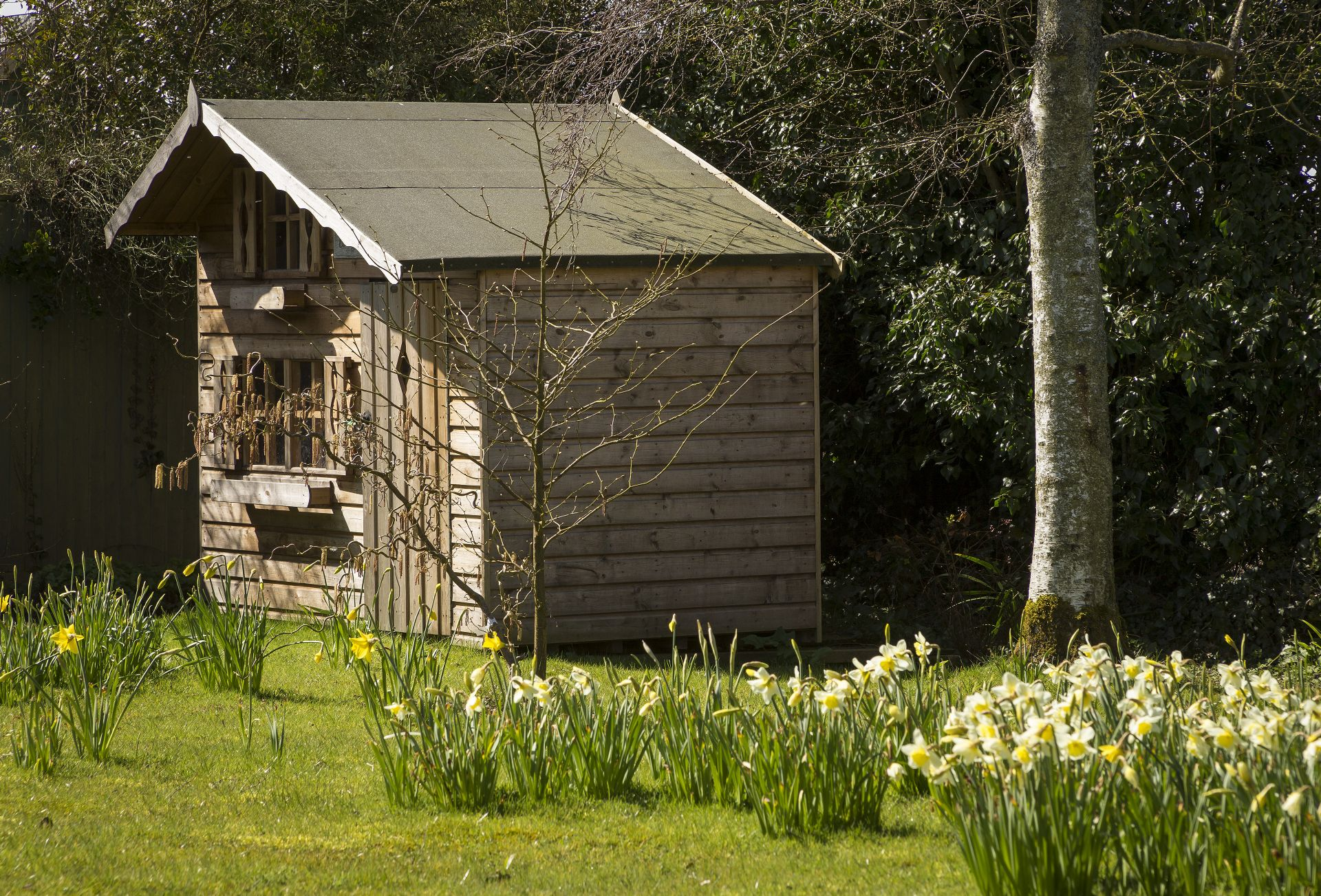 Outside the gardens extend to half an acre and children will delight in the 'Blackberry Cottage ' playhouse and swings