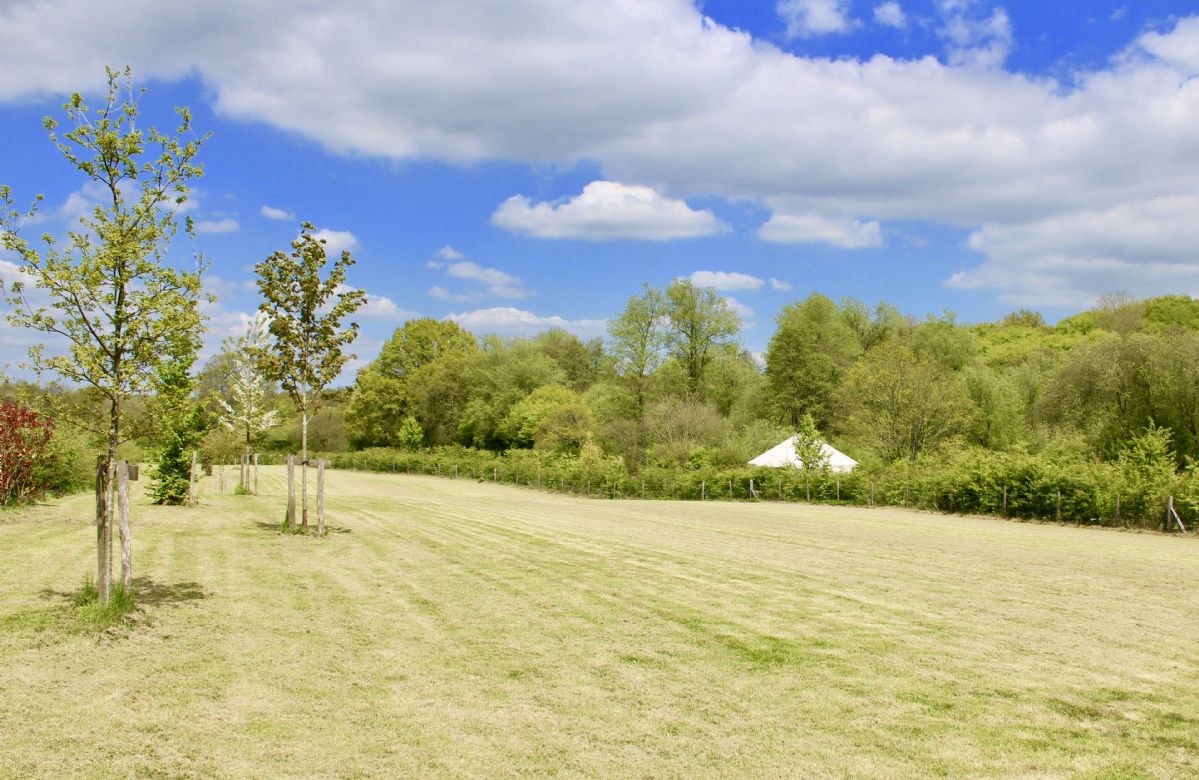 Ash Yurt and Oak Yurt are situated on beautiful, peaceful farmland (professional photography coming soon)