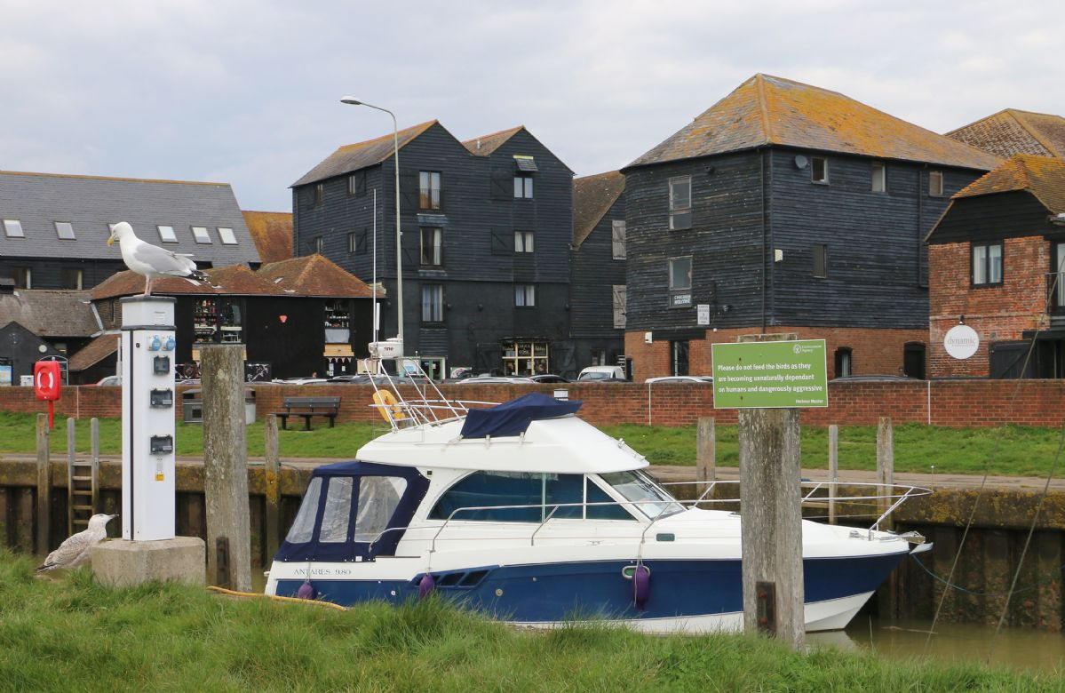 Situated in a quiet part of the town overlooking the harbour yet within walking distance to all Rye has to offer