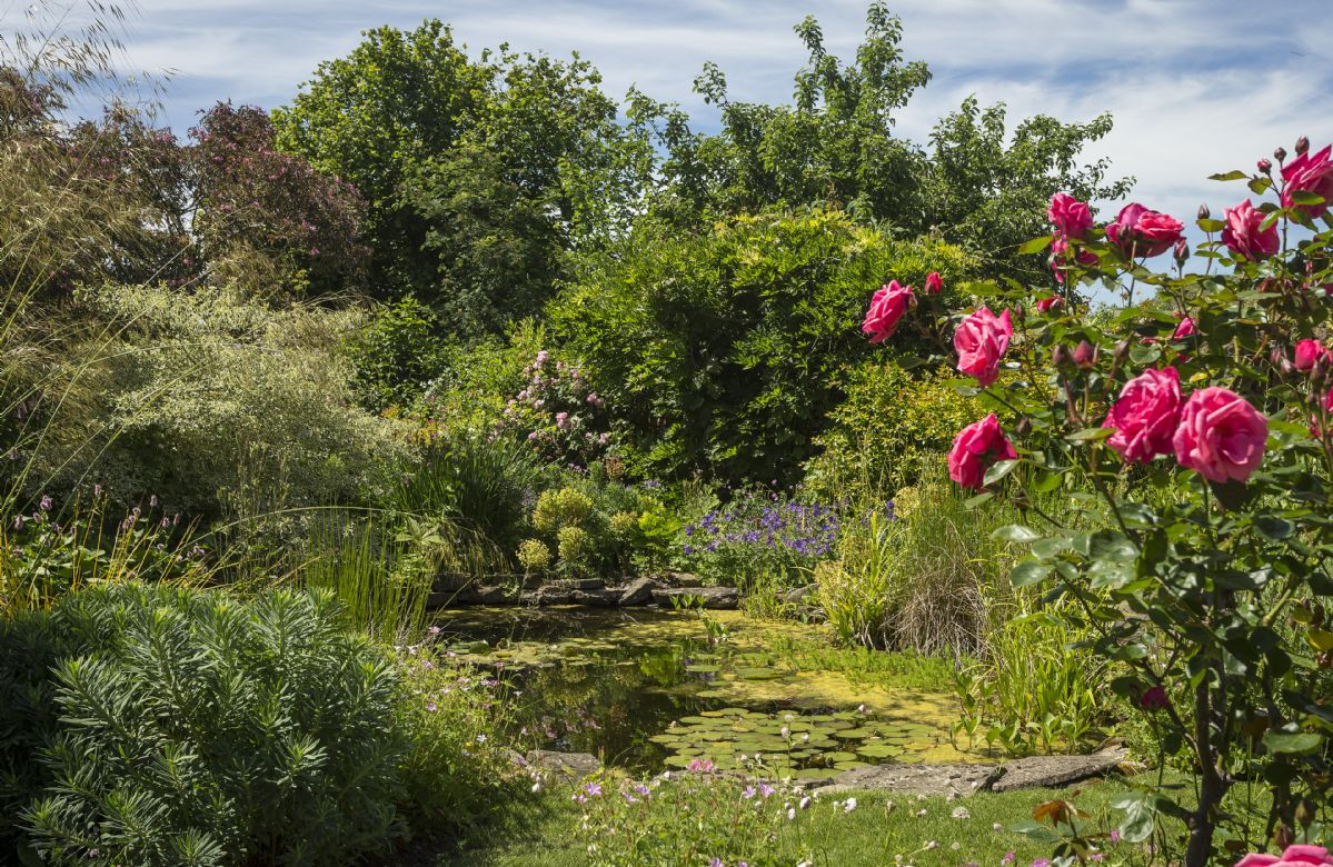 The garden is beautifully designed with two ponds and a waterfall feature