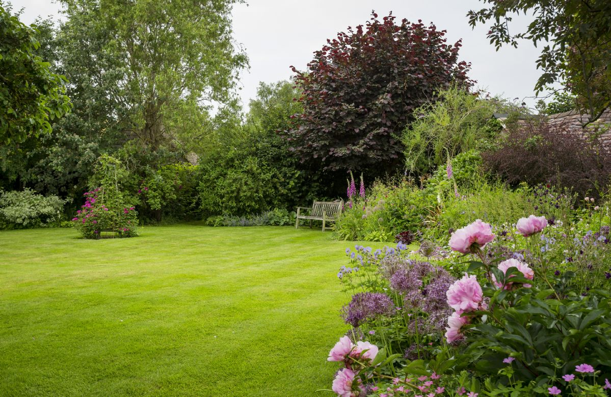 The lawned garden and well stocked borders feature many cottage garden favourites
