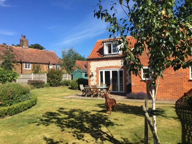 Hare Cottage in Ringstead | Happy dog
