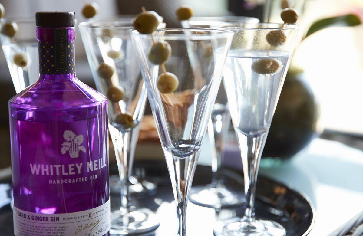 Enjoy  a gin cocktail
