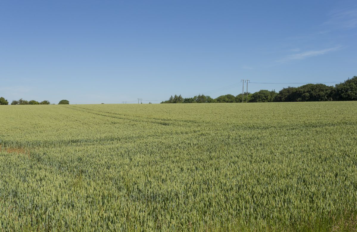 Rolling English fields and plenty of countryside walks