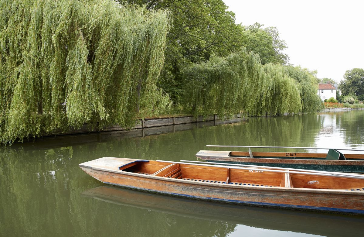 Hire a punt on the river in Cambridge