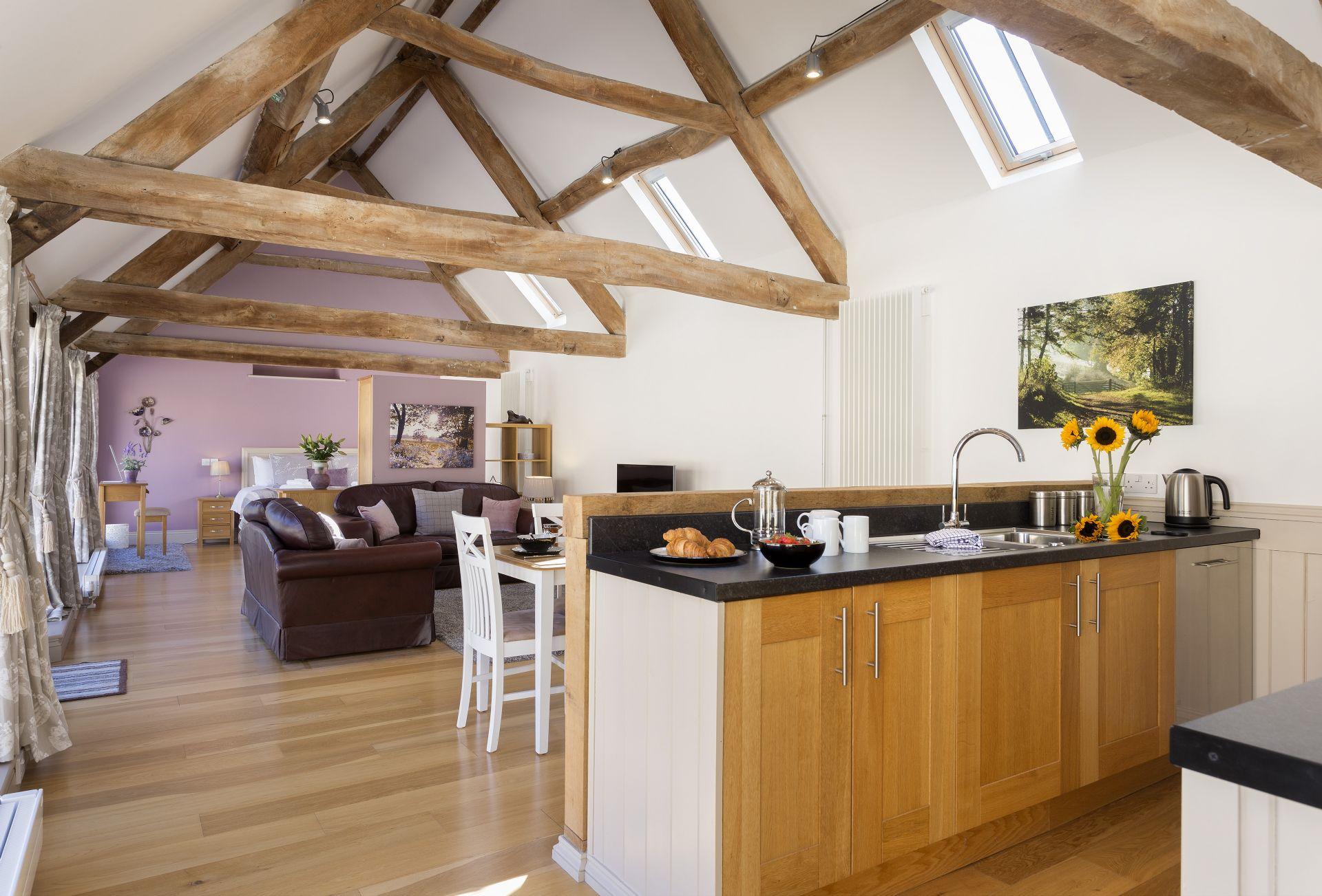 Ground floor: Open-plan living space