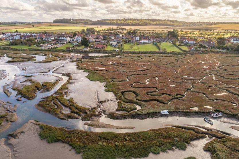 Pebble Cottage: Marsh