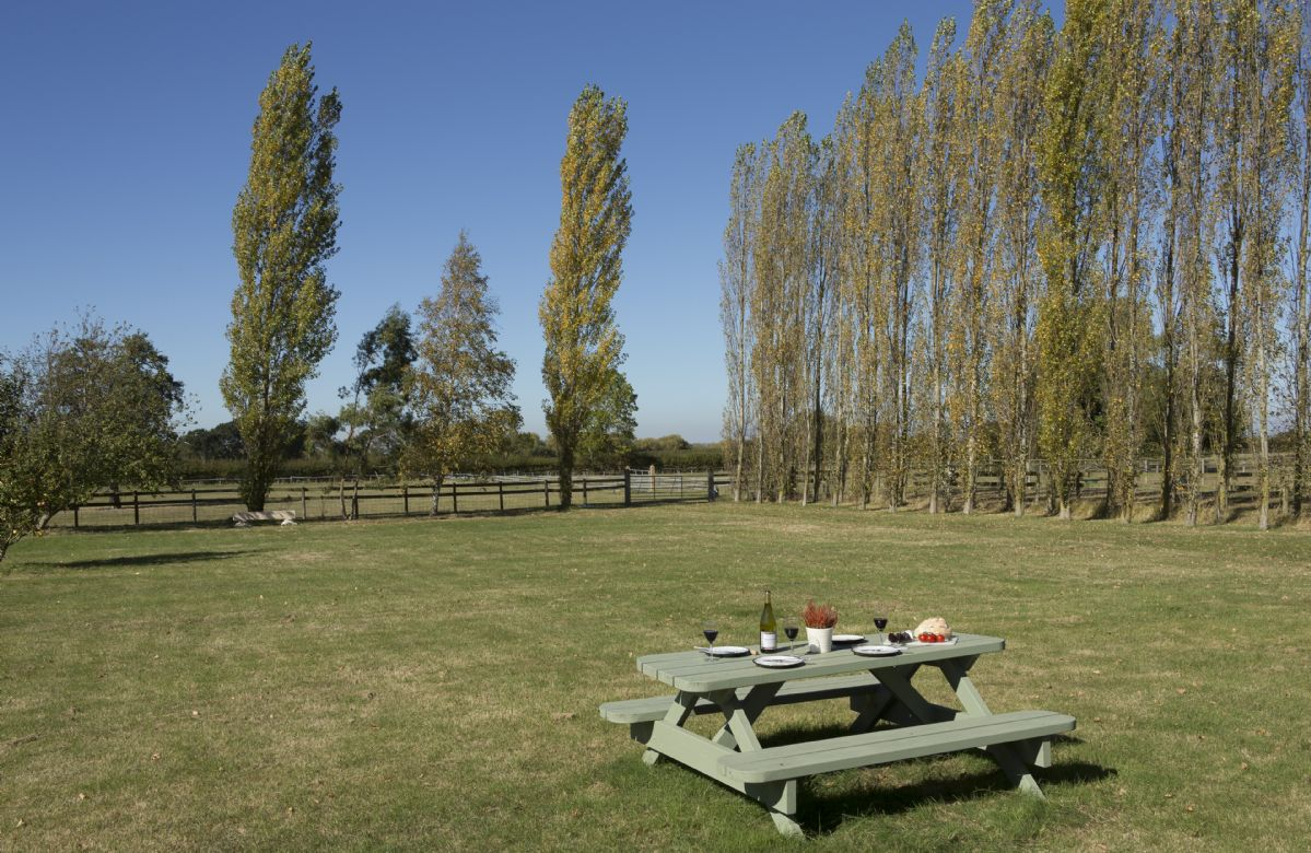 There is large mown area with fruit trees, a fire pit, table and chairs and a barbecue