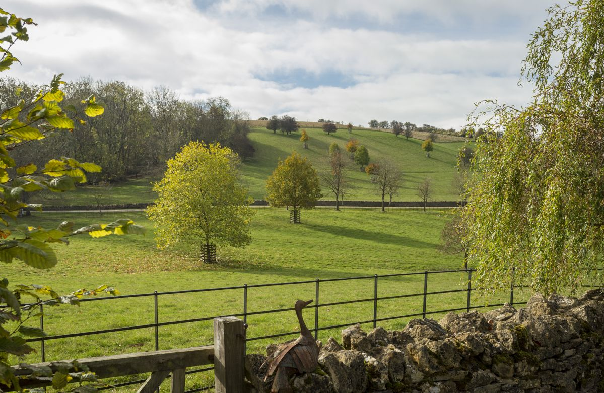 The cottage is nestled in hidden valley with spectacular views of rural parkland