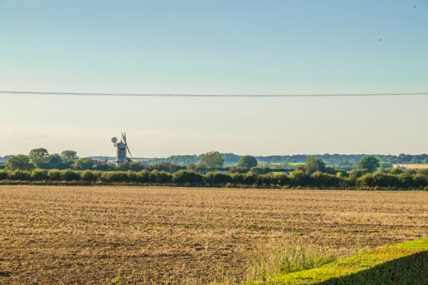 A view across the fields to Bircham Windmill which you can visit and purchase flour ... you can even climb to the top if you're not of a nervous disposition!
