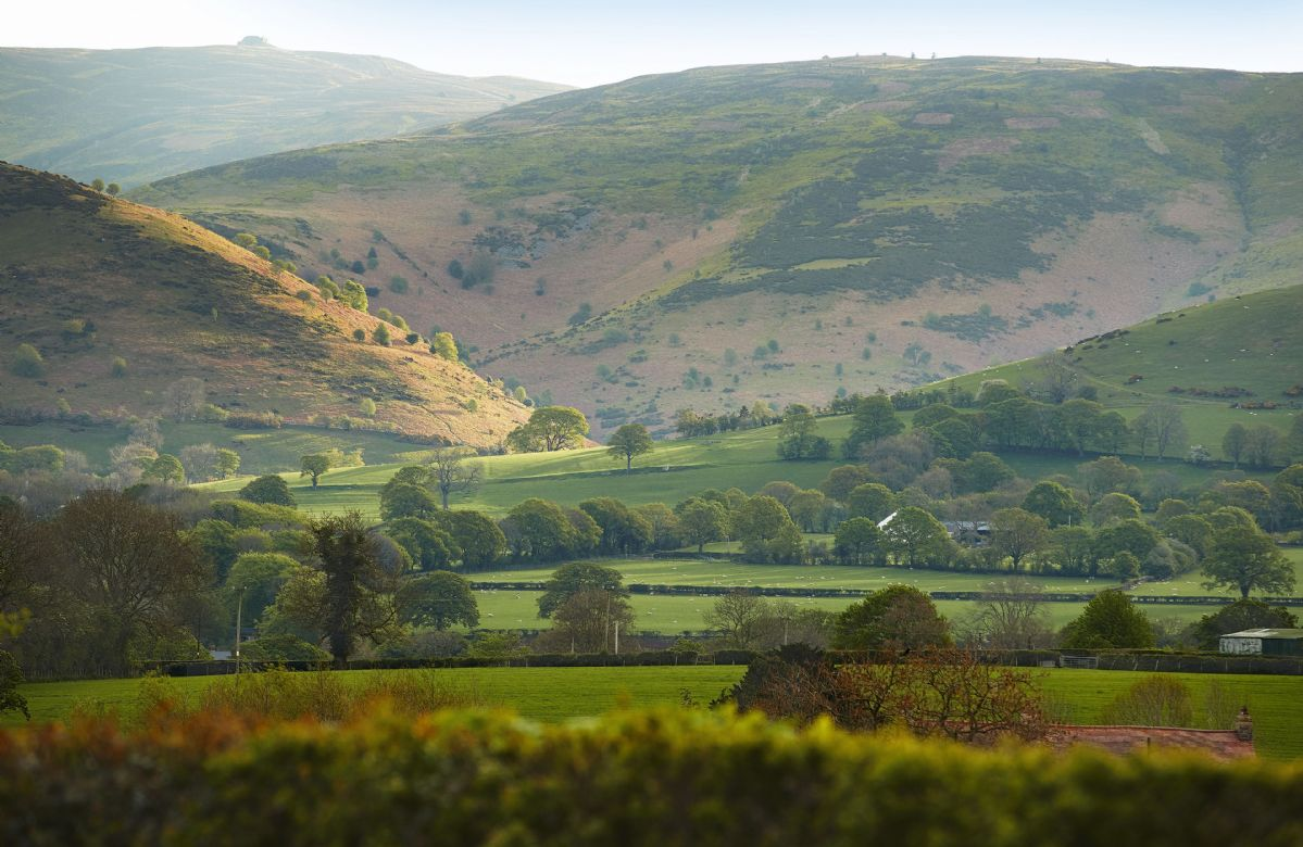 With the mountains of the Clywdian Range and the Dee Valley Area of Outstanding Natural Beauty, the countryside in this part of the world is very special indeed