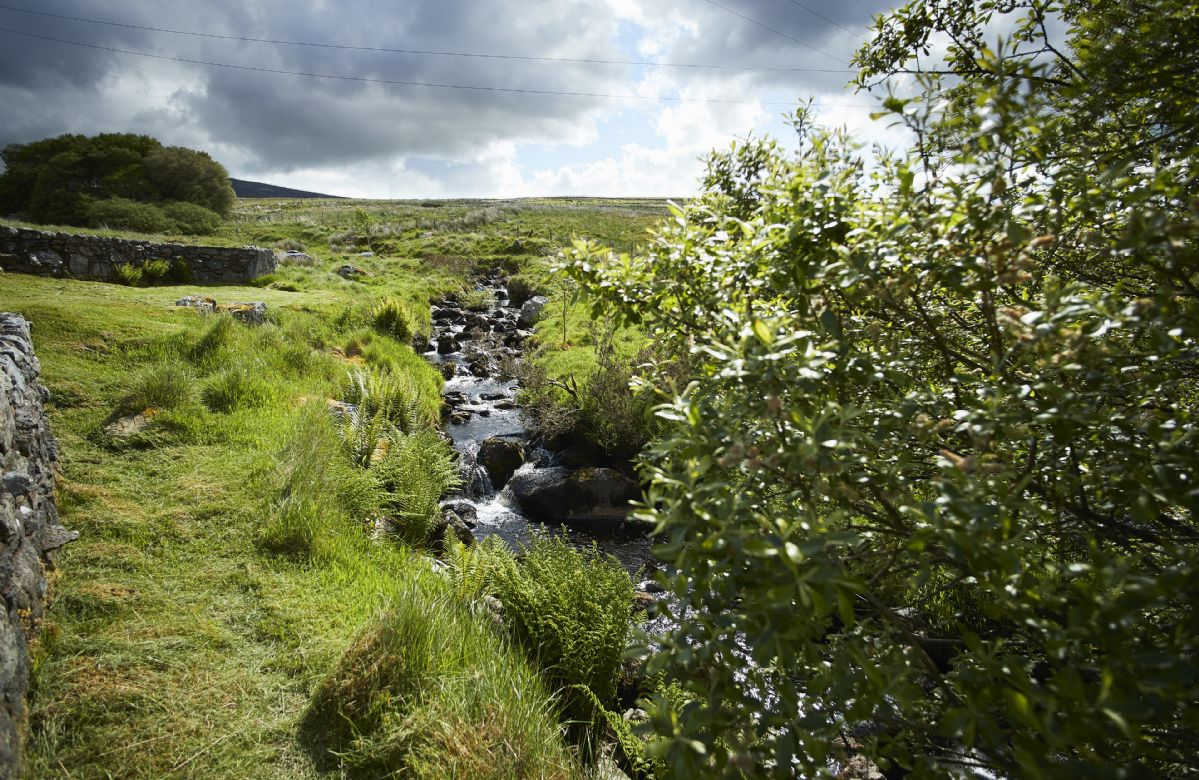 The property overlooks the mountains of Arenig Fach and Fawn as well as Lake Celyn