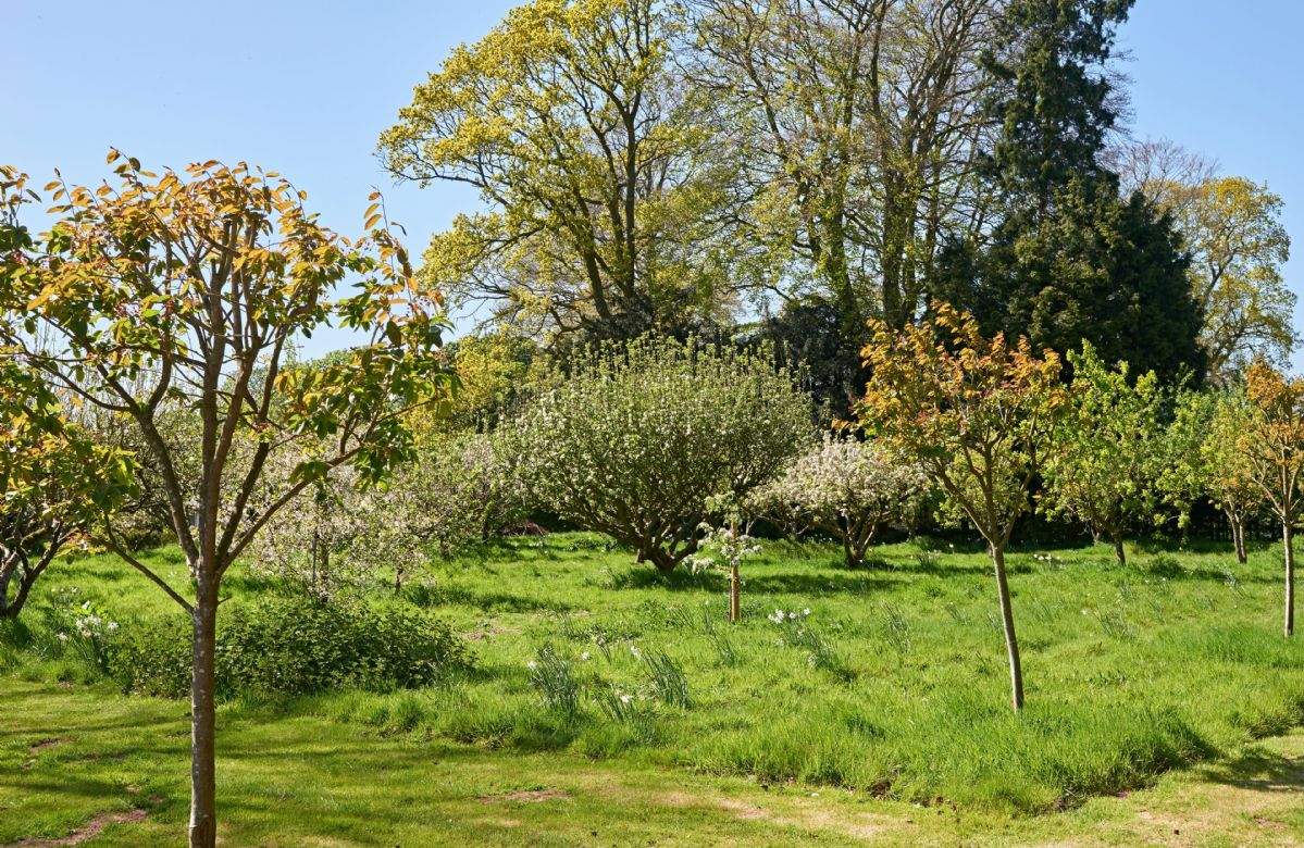 There is also an orchard and the quaint Little House nestled in the grounds